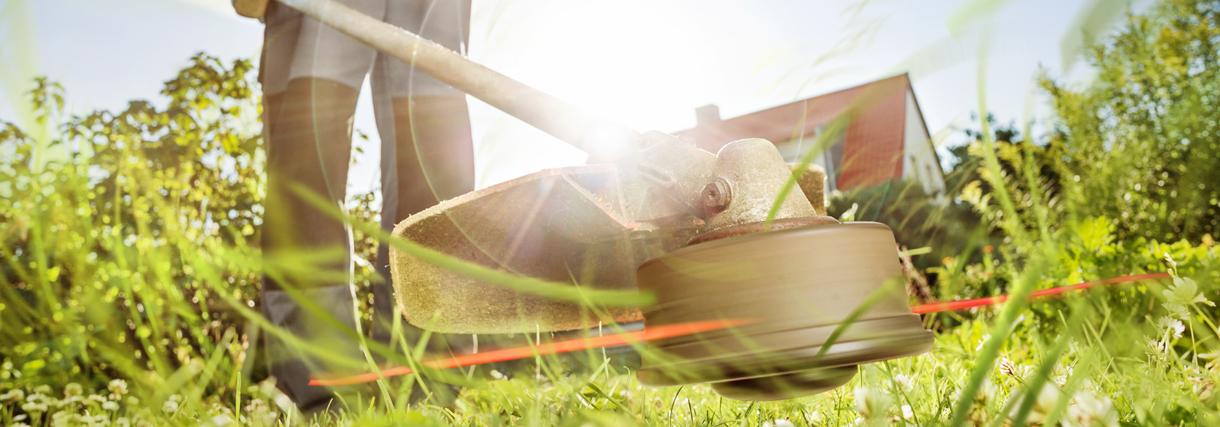 Gartengeräte und Teichreinigung